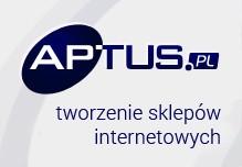 aplikacje internetowe dla biznesu